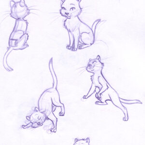 Sketchbook cat ruffs