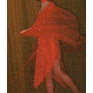 Red Costume design 2
